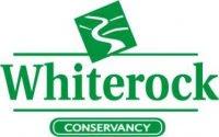 Whiterock_r1_c1